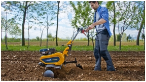 Kaip pasirūpinti dirvožemiu rudenį?